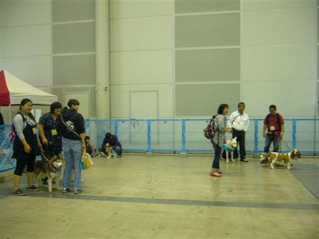 P1060080